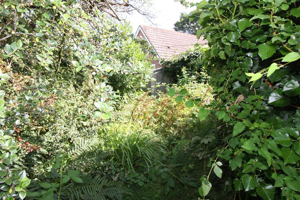 15 Jumpers Avenue Garden